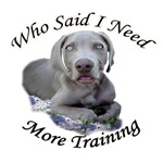 Weimaraner Puppy Needs More Training
