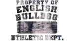 Property of English Bulldog