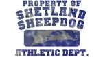 Property of Shetland Sheepdog