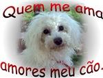 Animal de estimação-Amantes Portuguese