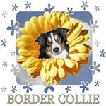 Border Collie Flower