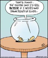Fish Drink Fluids