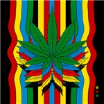 MARIJUANA T SHIRTS