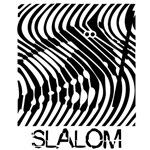 Slalom Skiing