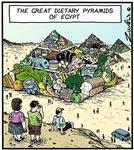 Dietary Pyramids