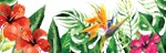 Tropical Watercolor Floral Landscape