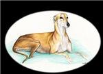 Tan Greyhound Laying
