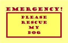 EMERGENCY DOOR & WINDOW STICKERS FOR DOGS