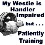 Westie Agility