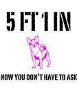 5 FT 1 IN