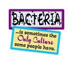 Bacteria Is Only Culture
