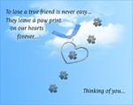 True Friend Sympathy Card
