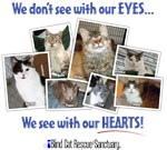 We see with our heart