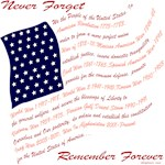 Veterans Never Forget USA Men's T-Shirts