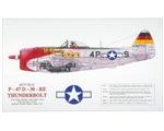 Republic Thunderbolt Aircraft