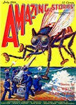 Amazing Giant Fly Cover Art
