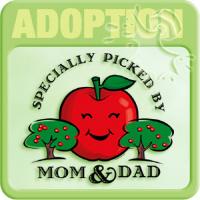 Adoption T-shirts & Gifts