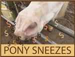 Pony Sneezes