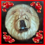 Chinese Chow Chow