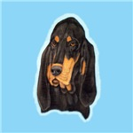 Black & Tan Coonhound Head Study