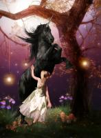 The Girl and the Dark Unicorn