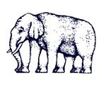 elephant how many legs
