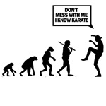 dont mess with me i know karate