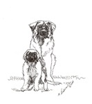 Leonberger Dog Family