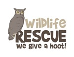 Wildlife Rescue We give a hoot!
