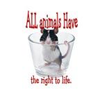 all animals...