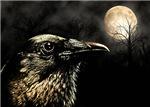 Crow in Moonlight