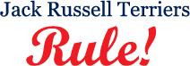 Jack Russell Terriers Rule!