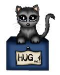 Hug me ! Cat