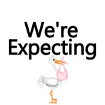 We're Expecting(stork delivery of baby girl)