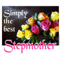 BEST STEPMOTHER T-SHIRTS AND GIFTS