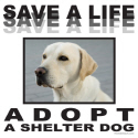 ADOPT A SHELTER DOG T-SHIRTS AND GIFTS