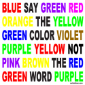 SAY THE COLOR NOT THE WORD T-SHIRT & GIFTS