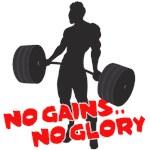 No Gains No Glory