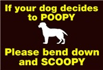 If your dog takes a poopy