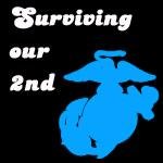 Surviving Our Second Deployment