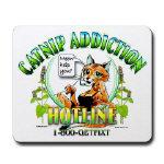 Catnip Addiction Hotline
