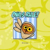 owls rule!