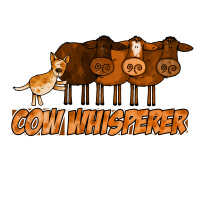 cow whisperer red heeler