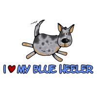 I love my blue heeler