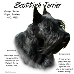 Scottish Terrier (Black)