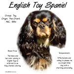 English Toy Spaniel (king charles)