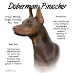 Doberman Pinscher (red)