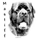 Mastiff (fluffy) Charcoal