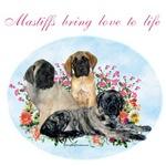 Mastiffs Bring