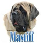 Mastiff(fawn)Name